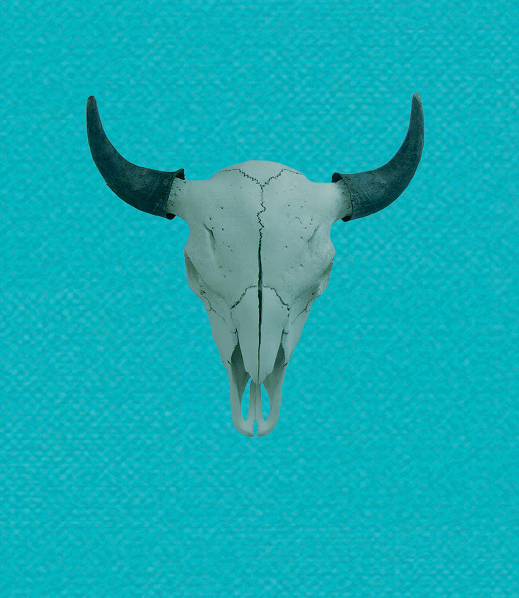 buffalo festival